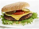 Hamburger spesial 200g