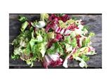 Salat lux