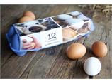 12 egg. Medium størrelse 53-63 gram